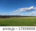 クローバーの草原 17936608