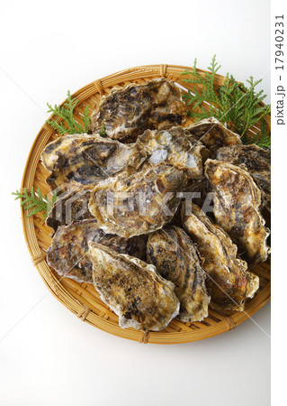 牡蠣の写真素材 [17940231] - PIXTA