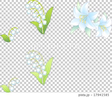 和の花 17941585