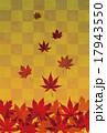 紅葉したモミジの背景画像 17943550
