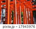 京浜伏見稲荷神社 17943976