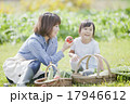 親子で家庭菜園 17946612