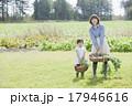 親子で家庭菜園 17946616