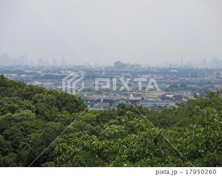 生田緑地の枡形山展望台からの眺め(東側 東京方面) 17950260