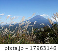 富士山とススキ 17963146
