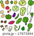 野菜 緑黄色野菜 セットのイラスト 17973894