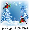 鳥 クリスマス スノーフレークのイラスト 17973944