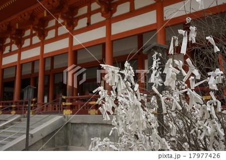 おみくじむすび木 和の風景 17977426