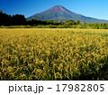 富士山 秋 風景の写真 17982805