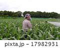 農業 農薬 17982931