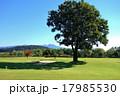 グランドゴルフ場 17985530
