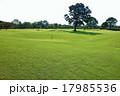 グランドゴルフ場 17985536