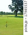 グランドゴルフ場 17985537