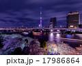 東京スカイツリーと夜桜 17986864