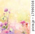 花 コスモス フラワーのイラスト 17990308