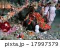 赤いタツ 17997379