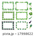野菜フレーム(丸・カブ、小松菜、キャベツ、キュウリ、ナス、ネギ) 17998622