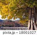京都・嵐山の紅葉と渡月橋「日本百名橋」 18001027
