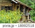 五郎さんの丸太小屋とオオハンゴウソウ 18002518