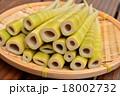 四方竹 筍 たけのこの写真 18002732