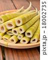 四方竹 筍 たけのこの写真 18002735