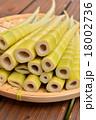 四方竹 筍 たけのこの写真 18002736