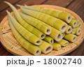 四方竹 筍 たけのこの写真 18002740