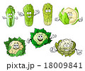 カリフラワー ベジタブル 野菜のイラスト 18009841
