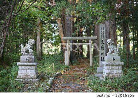 富山県立山町芦峅寺の志鷹神社 18016358