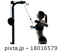 body buiding woman isolated 18016579