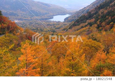 奥日光の紅葉。混雑を避け切込湖・刈込湖や金精峠 …