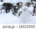 雪だるま・大 18025003