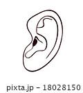 耳のイラスト_モノクロ 18028150