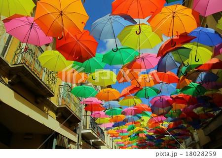 アゲダ傘(Agueda Umbrella) 18028259