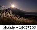 冨士山 ススキ 夕暮れの写真 18037205