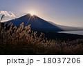 冨士山 ススキ 夕暮れの写真 18037206