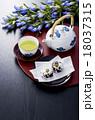 お茶 煎茶 緑茶の写真 18037315