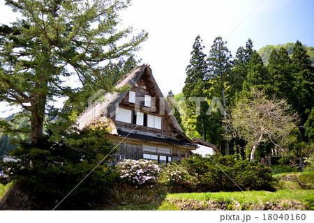 北陸の春 茅葺き屋根の世界遺産 五箇山 18040160