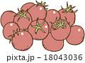 トマト ミニトマト 野菜のイラスト 18043036