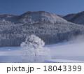 霧氷 自然 風景の写真 18043399