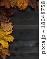 Wood autumn background 18048758