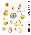 秋冬の素材・かぼちゃいろいろ① 18048841