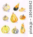 秋冬の素材・かぼちゃいろいろ② 18048842