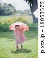雨の日の女の子 18053375