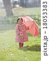 雨の日の女の子 18053383