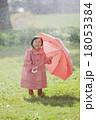 雨の日の女の子 18053384