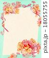 ポストカード カード カーネーションのイラスト 18055755