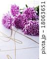 和花 18063651