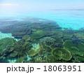 珊瑚礁 18063951