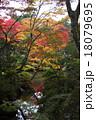 逍遥園 紅葉 風景の写真 18079695
